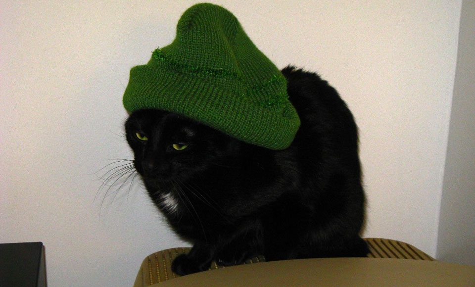 A photo of a miserable looking black cat sitting on top of a computer monitor wearing a large green beenie.