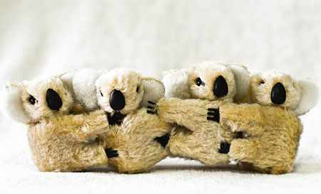 A photograph of small koala toys hugging each other